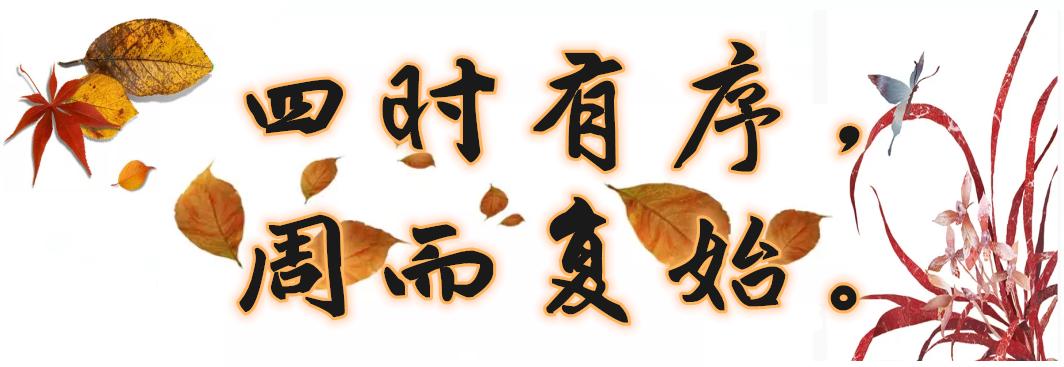 秋风起兮,秋来兮