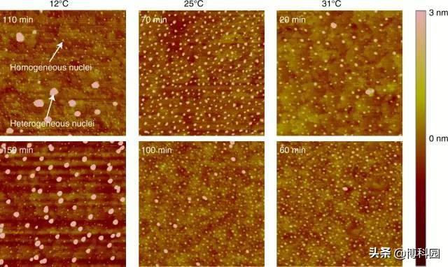重磅成果:首次在四维时空中,捕捉到原子的运动