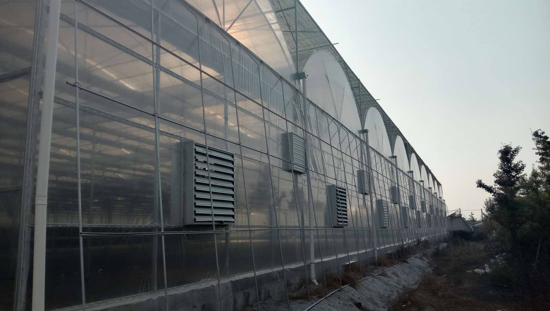 北方地区使用双膜连栋温室有什么好处?