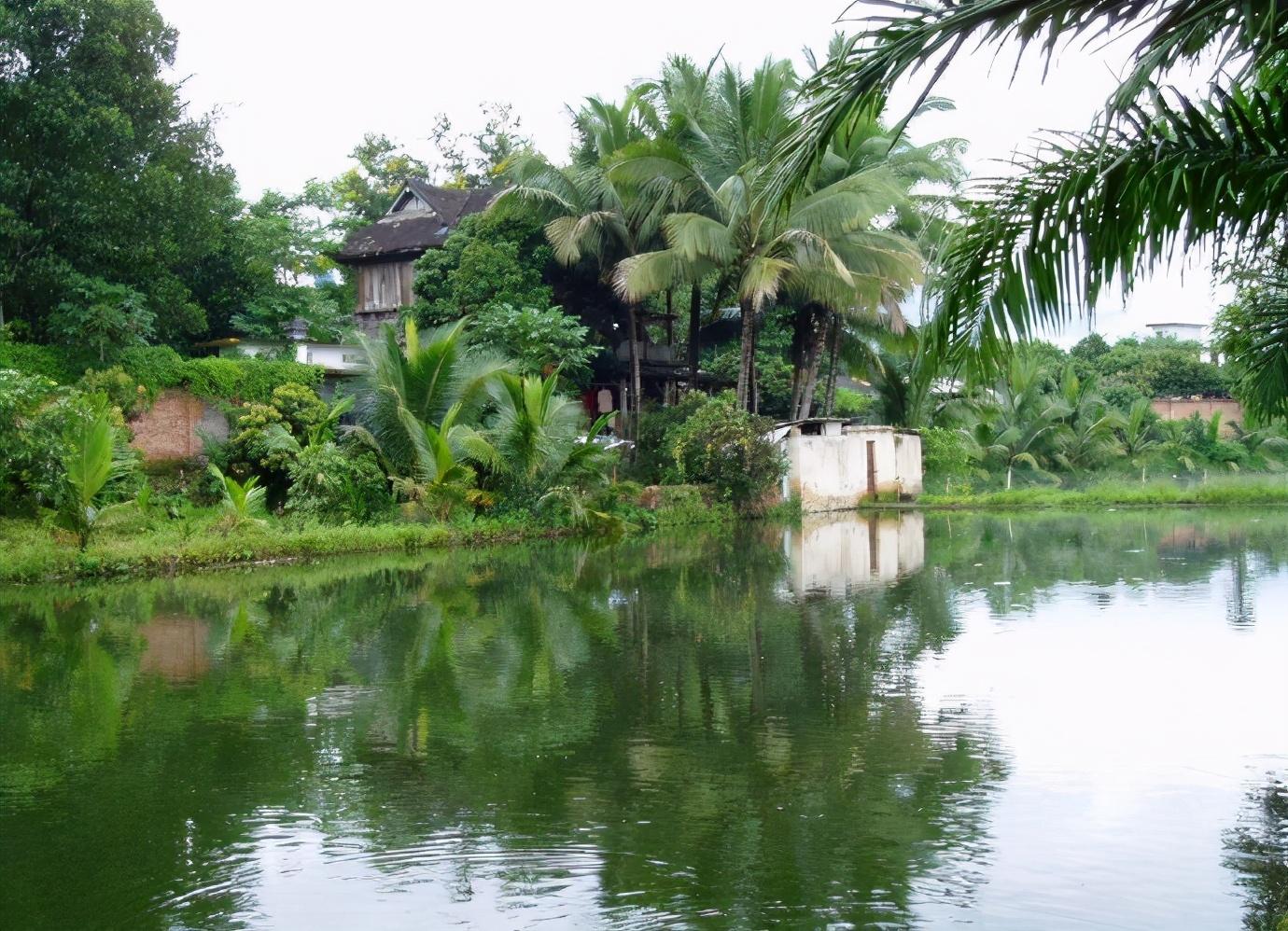 国内6个适合暑假去旅行的地方,清凉景美,去了一次还想再去