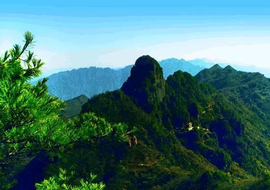 九连山:蕴藏一座丰富多彩的中草药宝库