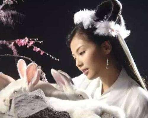"""空中搜索队刘鹏飞(捕捉红外影像)破案了!真的是""""玉兔""""接""""嫦娥"""""""