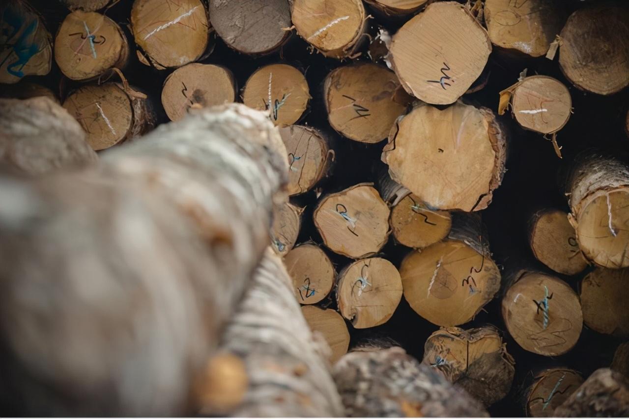 这样选板材不变形!航美无漆实木为你解析板材变形背后的秘密