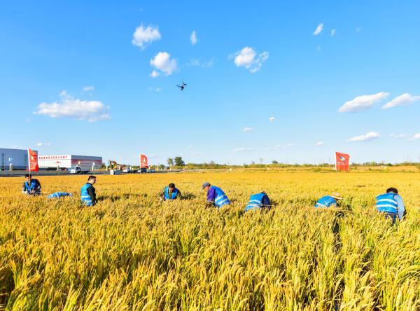 三农日报(1月27日)农业除了投钱之外,还要加大科技投入