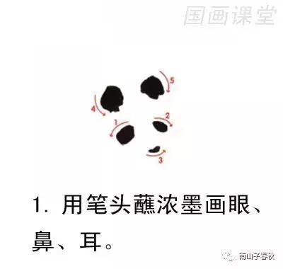 熊猫怎么画,6步教你画出国宝大熊猫