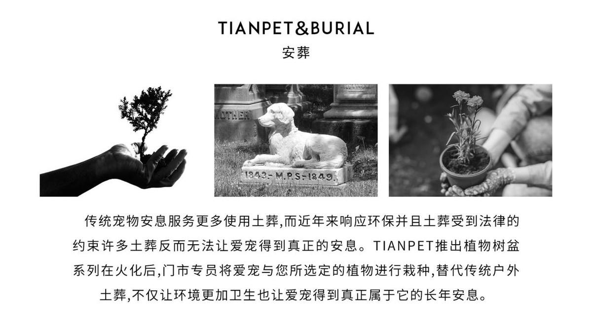 深圳宠物火化|宠物善终|宠物殡葬|TIANPET天宠24h