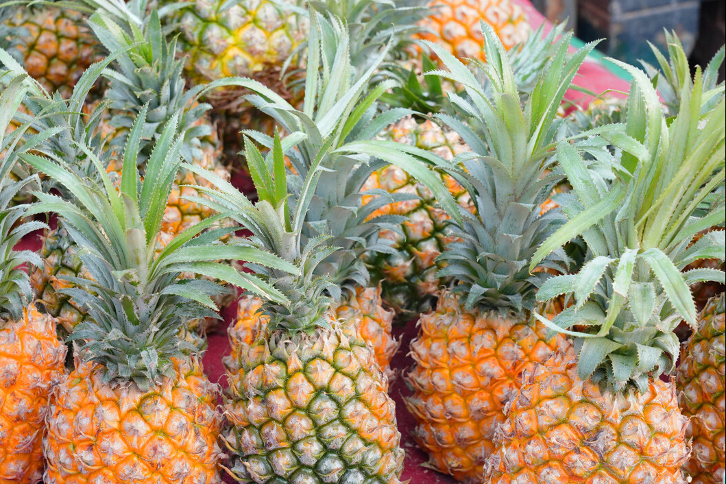 春天菠萝正当季,买菠萝时,牢记3个技巧,买到的香甜新鲜不涩口 美食做法 第1张