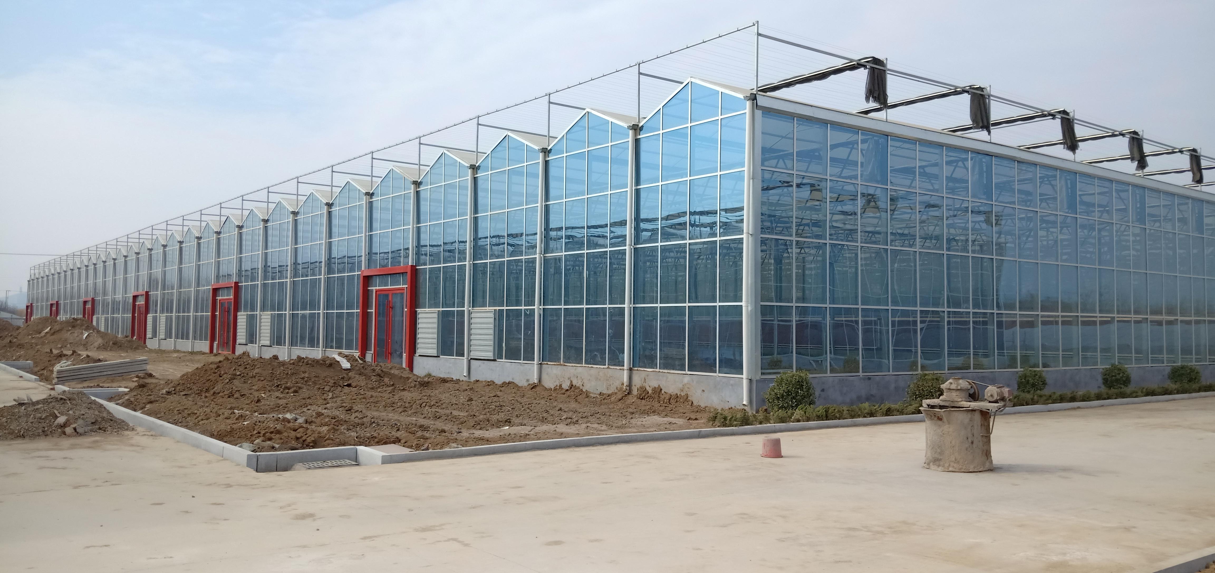 全玻璃温室大棚价格是多少?建造全玻璃温室大棚注意事项哪些