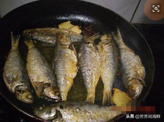 新鲜令吉鱼上市,做一道家常酱焖令吉鱼,味道鲜美无比