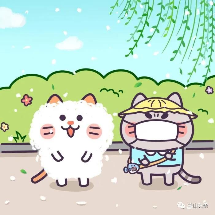 """前方高能!往年""""四月雪"""" 为啥今年未见漫天飞?"""
