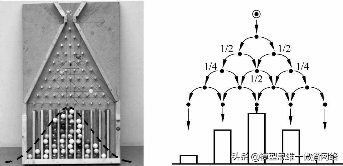 116思维模型:正态分布一核心的概率分布