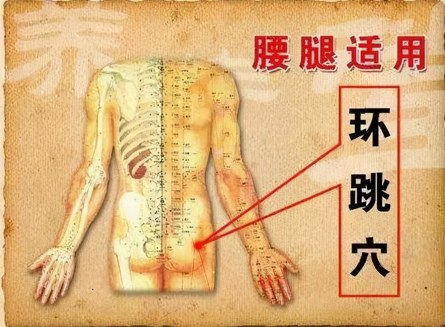 中医养生:腰胯疼痛,腰腿痛,坐骨神经痛,膝踝肿痛就灸它