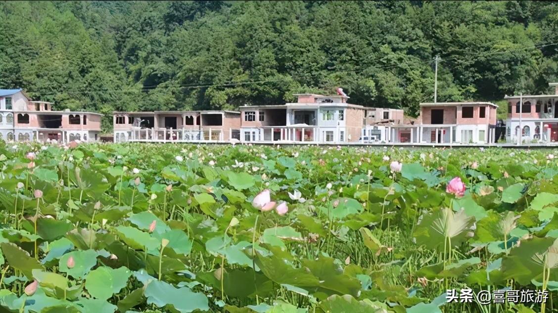 独山县旅游景点有哪些(独山县有什么好玩的)