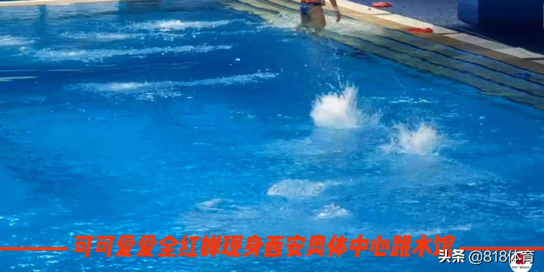 排面!全红婵全运会训练引20人10米台围观,伸脖子往下看水花消失术